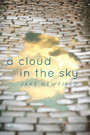 A Cloud in the Sky - Life's Greatest Lessons and Regrets
