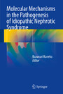 Molecular Mechanisms in the Pathogenesis of Idiopathic Nephrotic Syndrome